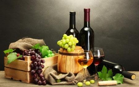 Виноделие как бизнес в деревне