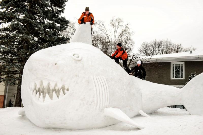 Локальные развлечения в зимний период